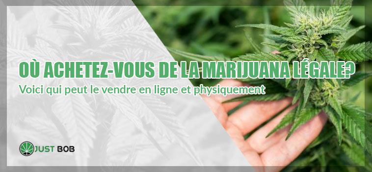 achetez-vous de la marijuana légale