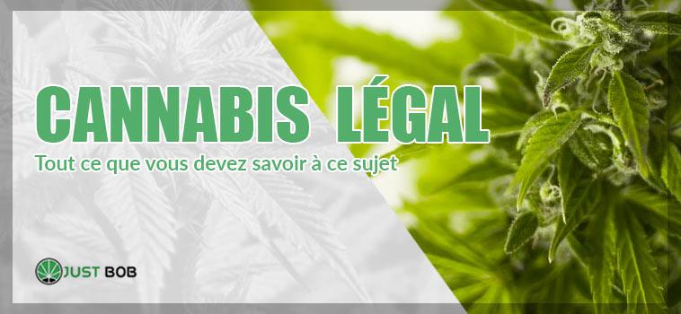 cannabis legal en france