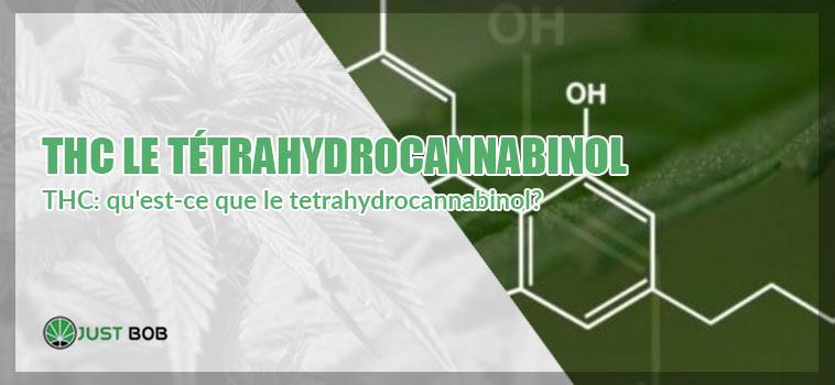 TÉTRAHYDROCANNABINOL