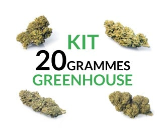 Kit 20 grammes Greenhouse justbob.fr