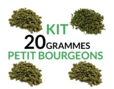 Kit 20 Grammes Small Buds justbob.fr