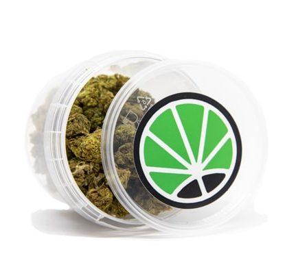fleur de marijuana sativa bubblegum